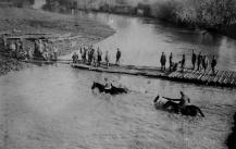 Armata Romana in Primul Razboi Mondial (17)