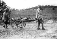 Armata Romana in Primul Razboi Mondial (18)
