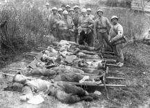 Armata Romana in Primul Razboi Mondial (2)