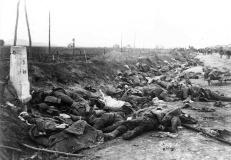 Armata Romana in Primul Razboi Mondial (68)